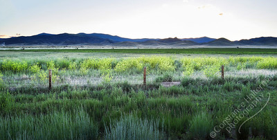 San Luis Valley - center pivot
