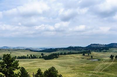 Custer State Park - Black Hills