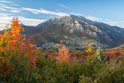 Squaw Peak Road - Mt. Timpanogos