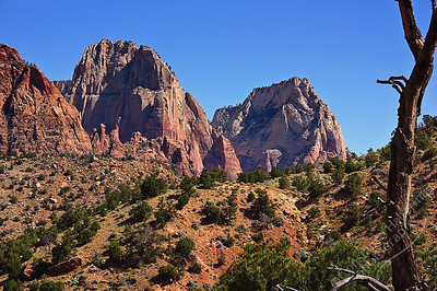 Zion National Park - red rocks