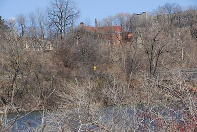 Twigs near the banks of Fox River, Appleton, Wisconsin