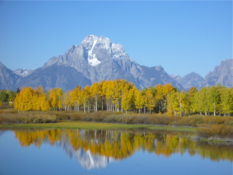 Golden leaves and mountains reflect in the waters at Oxbow Bend, Grand Teton National Park.