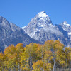 Fall in the Grand Tetons