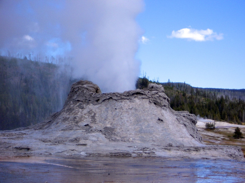steaming geyser in Yellowstone National Park