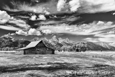 T. A. Moulton Barn, Grand Teton, National Park (Black & White)