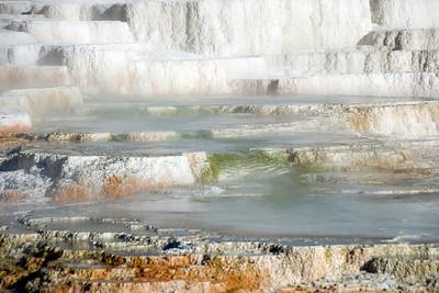 Mammoth Hot Springs, Yellowstone National Park, Wyoming