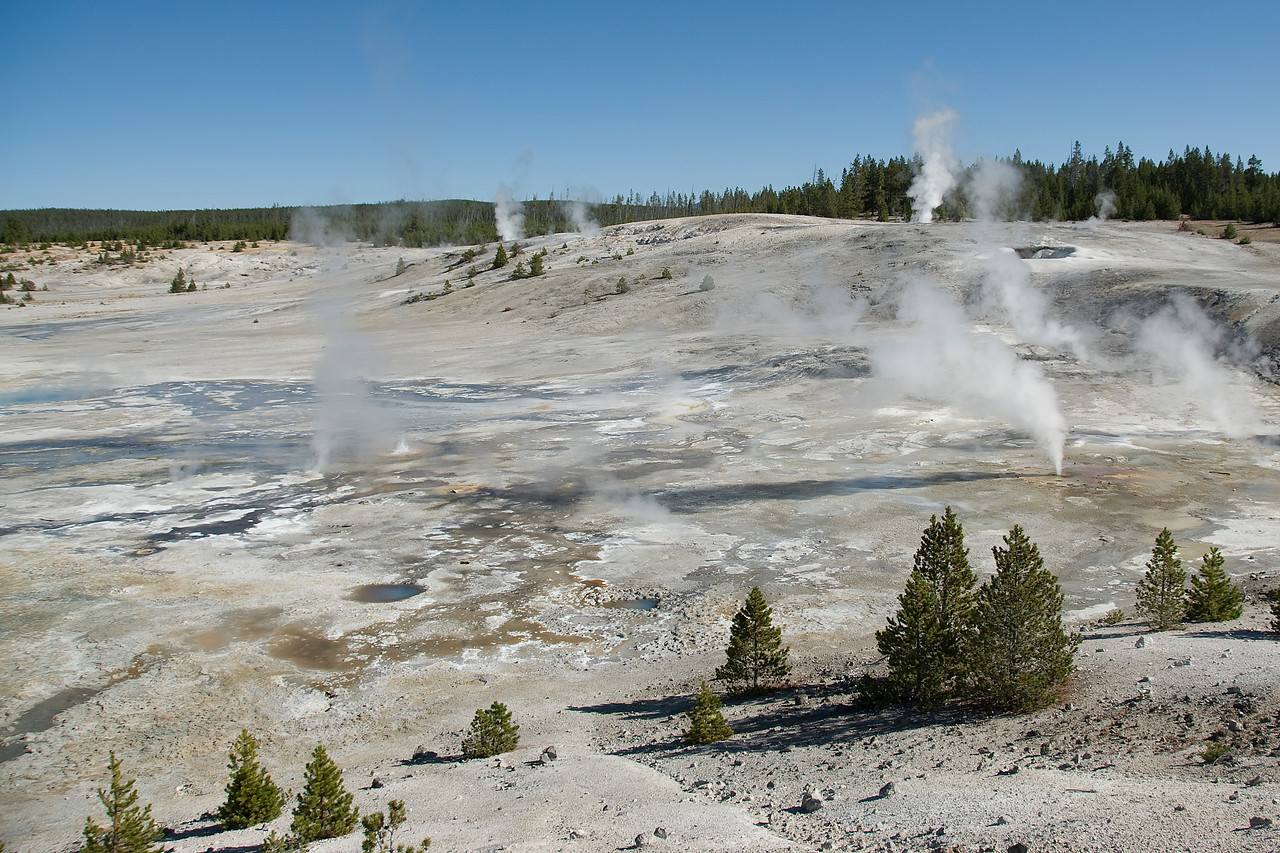 Geysers in Yellowstone National Park, Wyoming