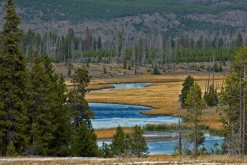 Firehole River, Yellowstone National Park