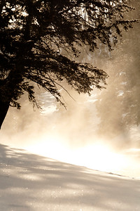 Steam rises in the early morning sunlight along the madison river