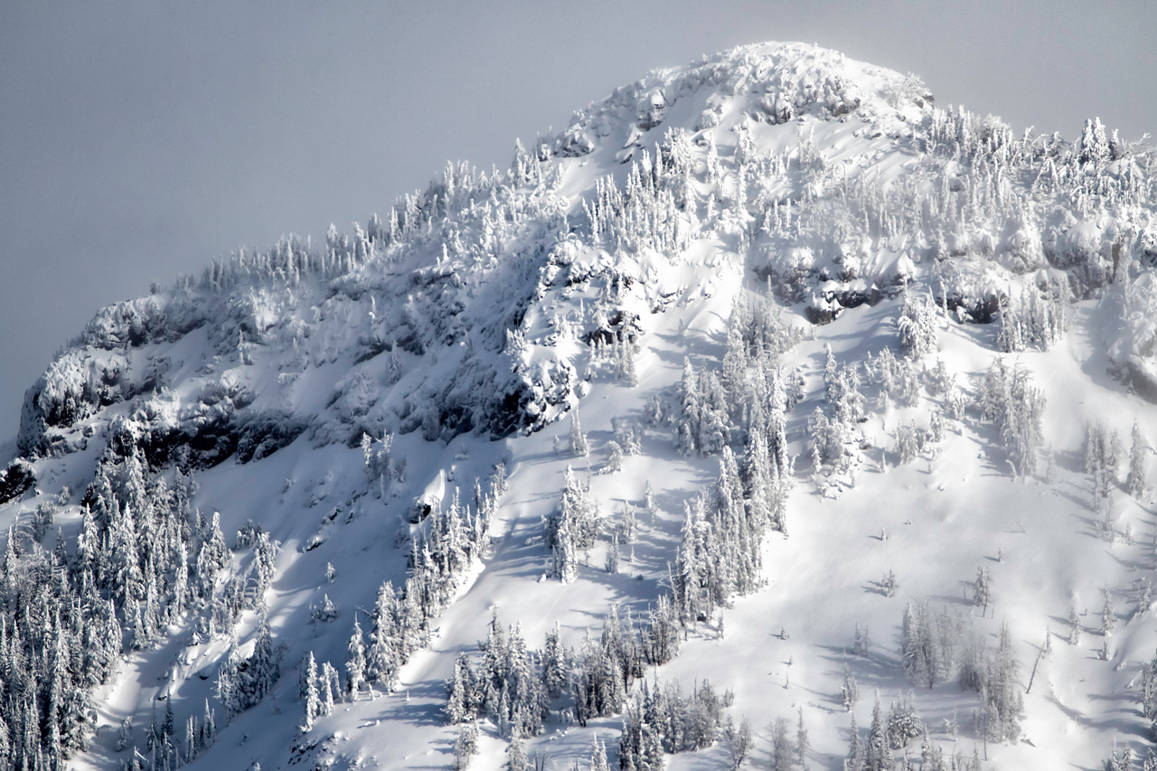 Snow covered trees and majestic mountains