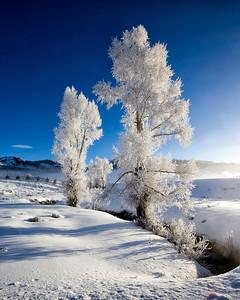 Frozen mist vertical