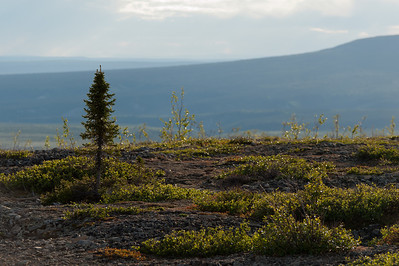 View from Dempster Highway in Yukon, Canada