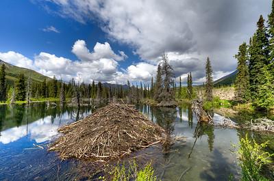 Blackstone River, Dempster Highway, Yukon, Canada