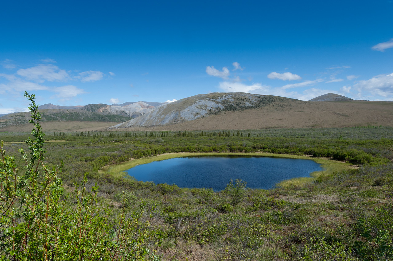 Round lake off of the Dempster Highway, Yukon, Canada