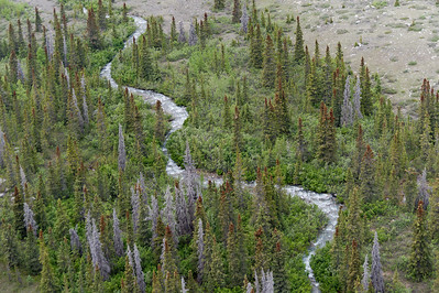 Meandering river at Kluane National Park, Yukon, Canada