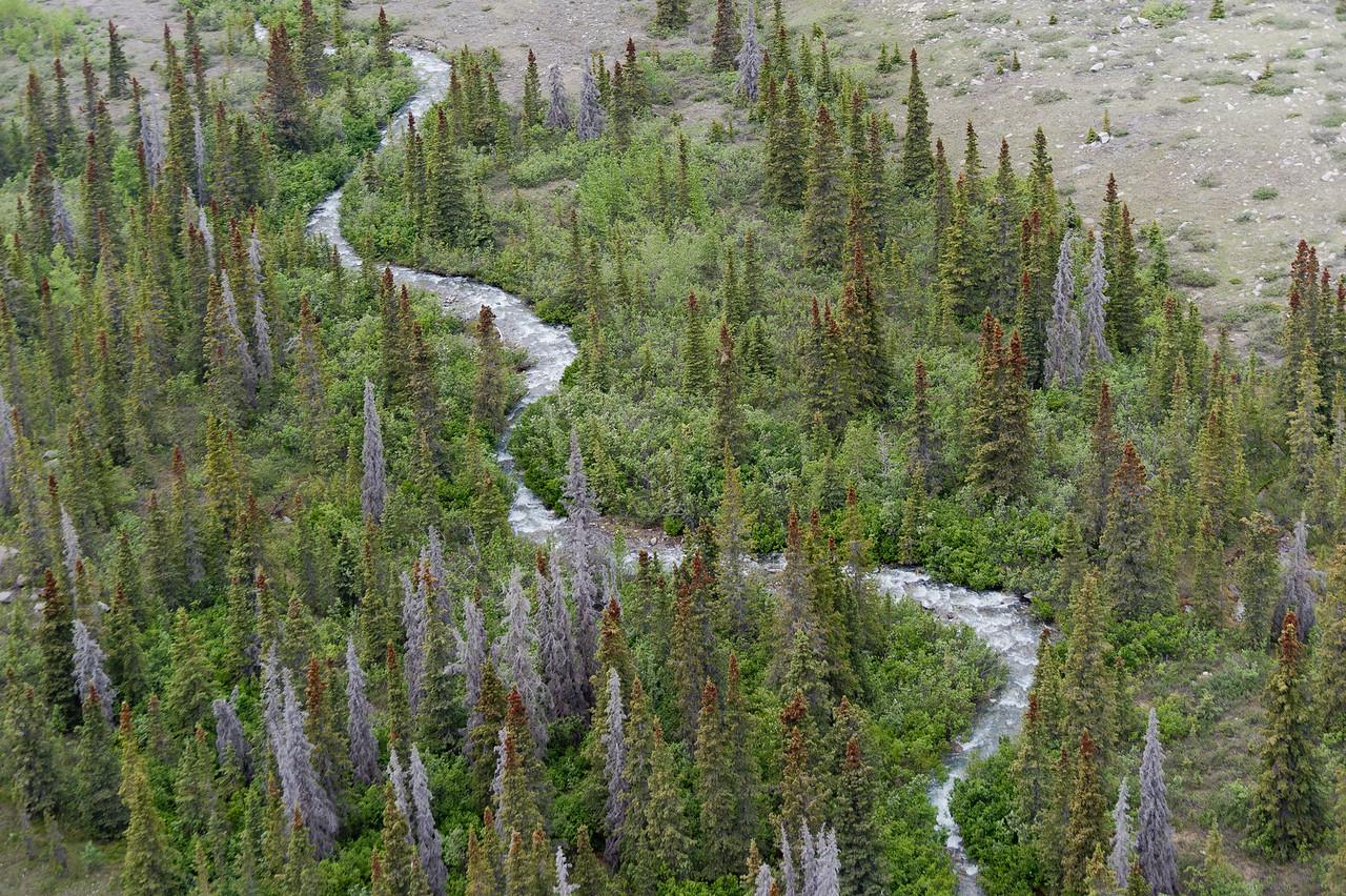 Meandering river at Kluane National Park, Yukon, Canada