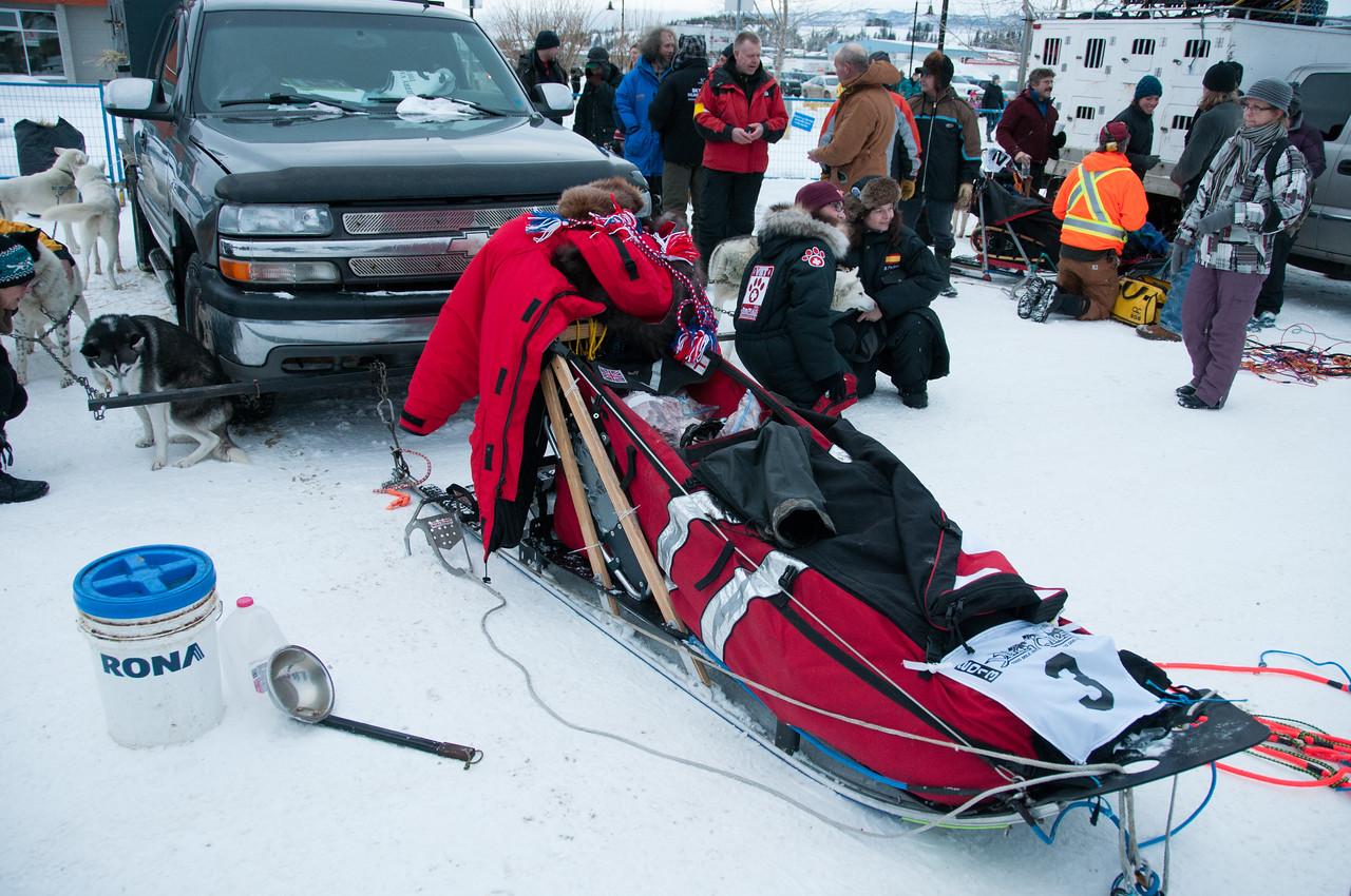 2013 Yukon Quest in Whitehorse, Yukon, Canada