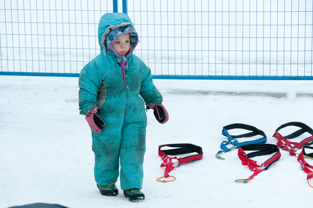 Child at the Starting Line of the Yukon Quest