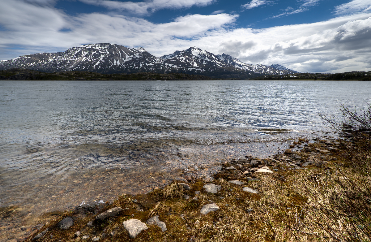On the Shore of Fish Lake Near Whitehorse, Yukon