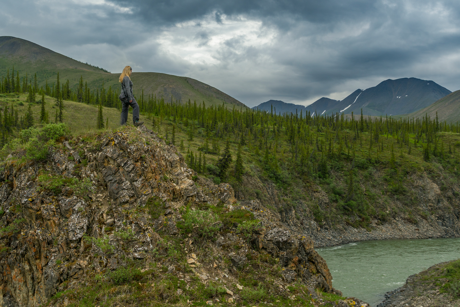 Keeping a lookout for bears in Yukon, Canada
