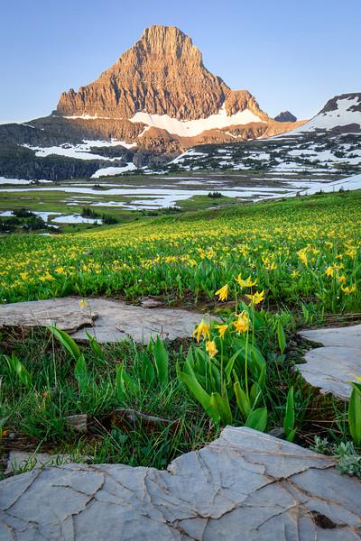 Mt. Reynolds Sunrise