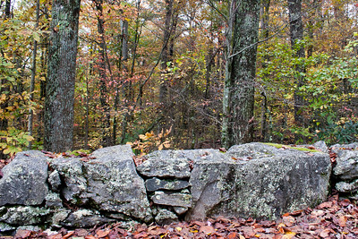 Blue Ridge Wall