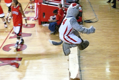 Action photo of the nimble Mr. Wolf.