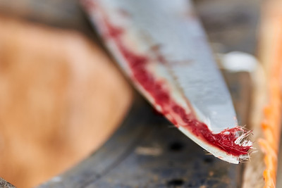 The blade of the cutting knife, covered in blood and feathers after slitting the necks of several chickens at Gnome Mountain Farms in Franklin, North Carolina, Sunday, June 27, 2021. (Joseph Forzano / Deep Creek Films)