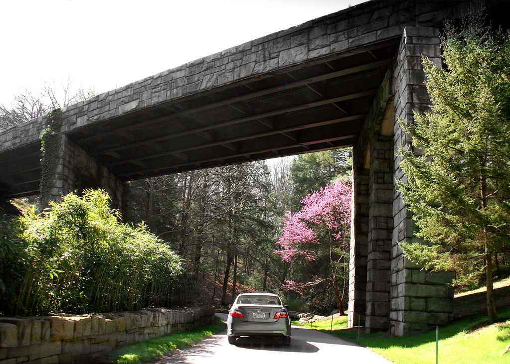 Going under the Blue Rodge Parkway on our way home from the Biltmore