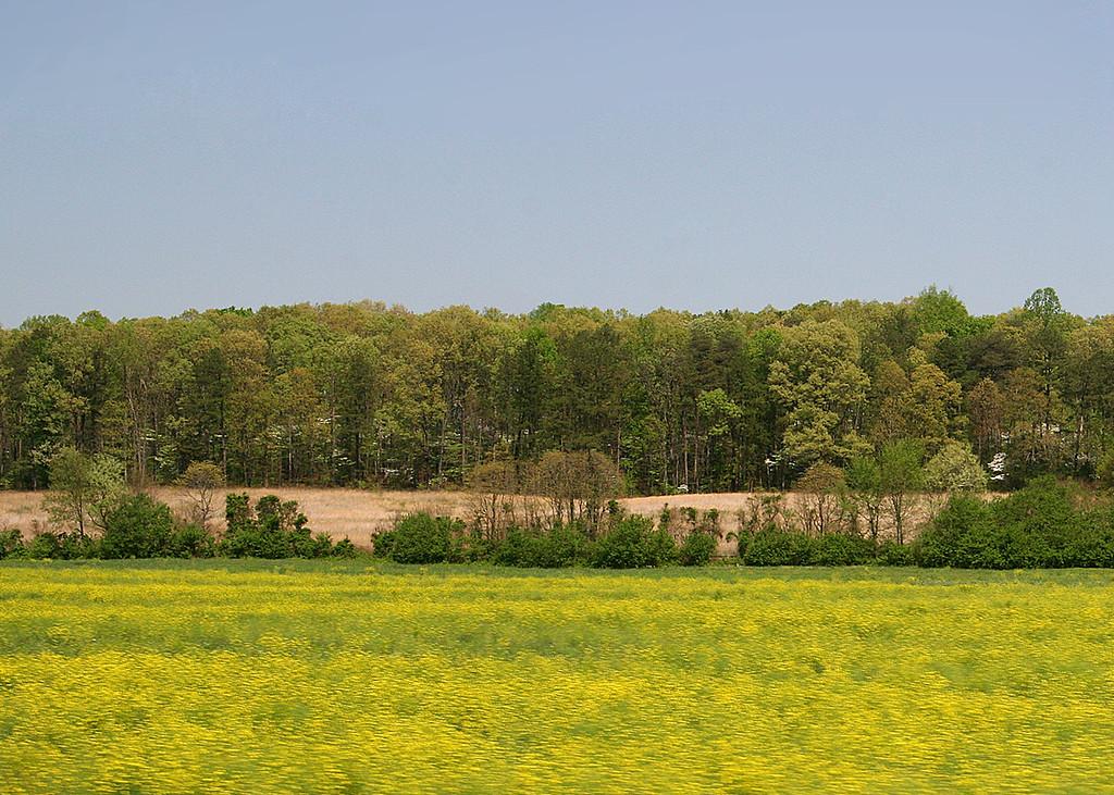 View along the way from Benton, TN to Murphy, NC  - 4/5/07
