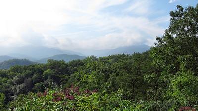 04 North Carolina-Biltmore
