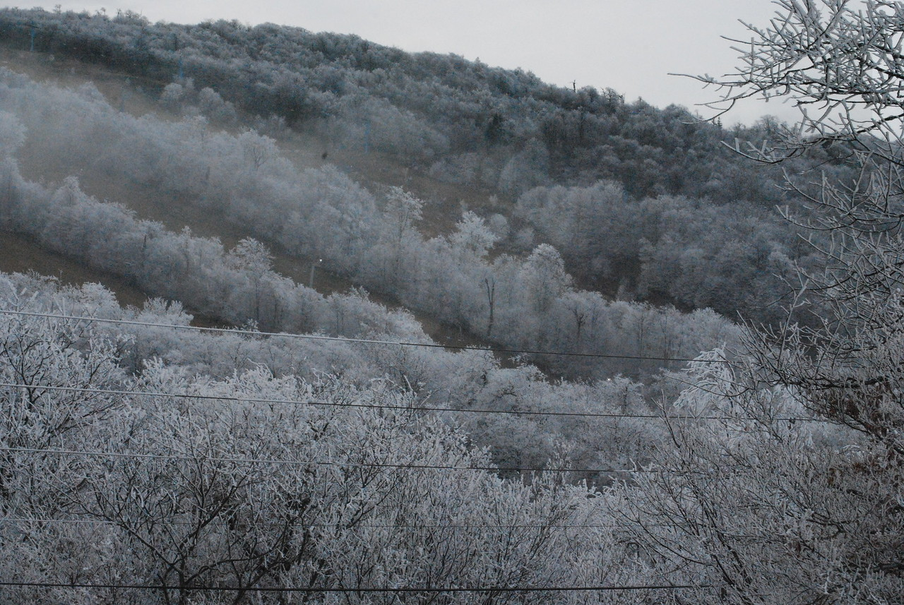 12-4-2009 Beech Mountain and Grandfather Mountain 037