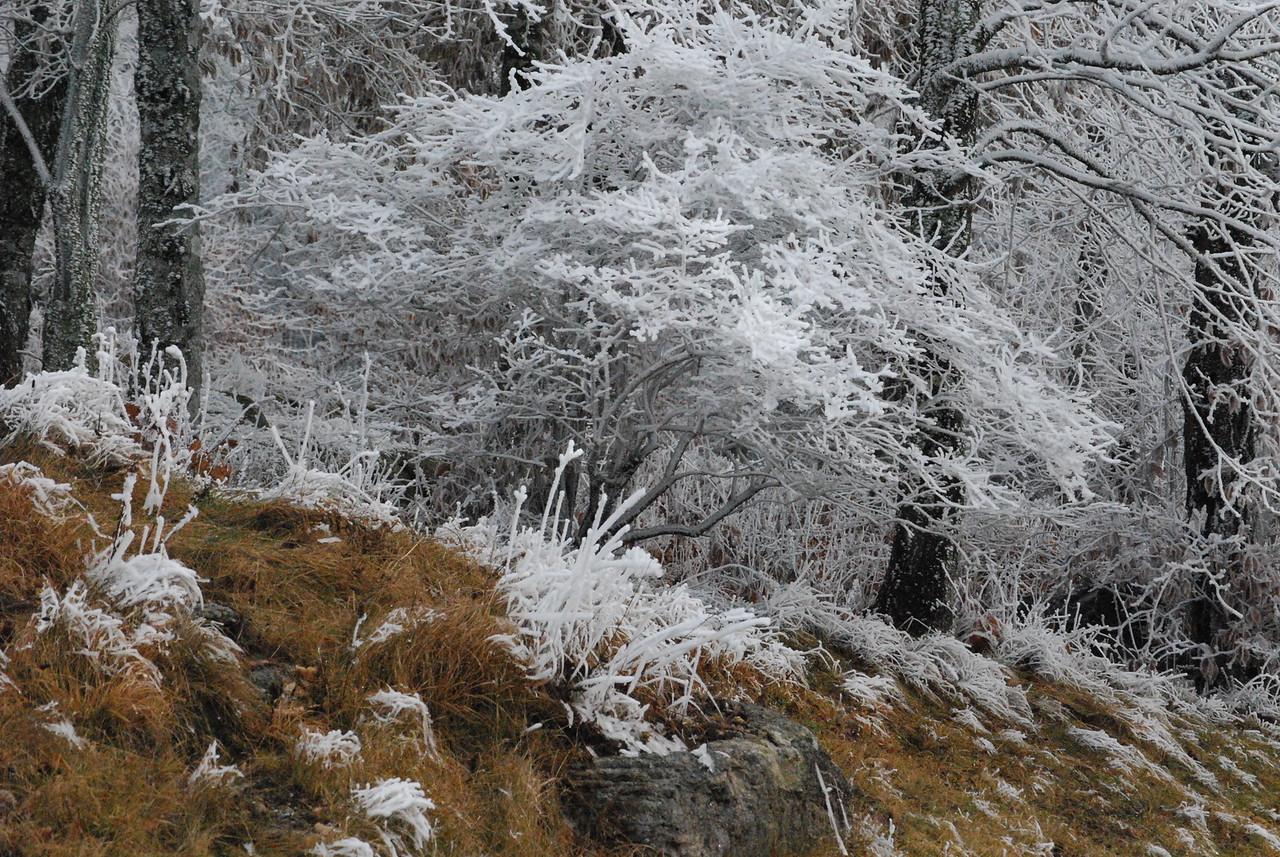 12-4-2009 Beech Mountain and Grandfather Mountain 039