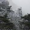 12-4-2009 Beech Mountain and Grandfather Mountain 117