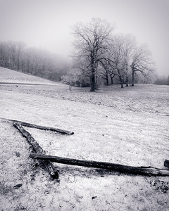 Split Rail at Blowing Rock