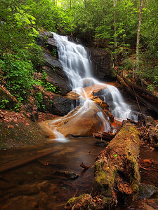 Waterfall On Log Hollow Branch