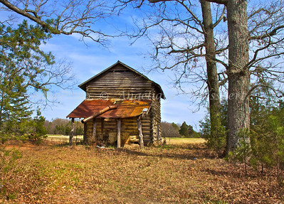 2005 2006-03-23804: Old Tobacco Dry Shed, around Lake Jordan, Nc