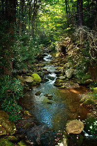 One of the many small creeks around  Black Mountain Camp, Blue Ridge Parkway 164
