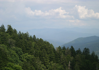 View from Newfound Gap, in the direction of the Plott Balsams.