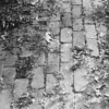 23 brick path
