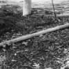 10 Metal Pole