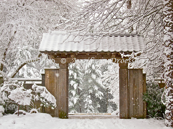 Entrance to the Japanese Gardens, S. P. Duke Gardens, Durham, NC
