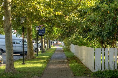 A brick sidewalk under the shade of trees along South Broad Street in Edenton, NC on Thursday, August 20, 2015. Copyright 2015 Jason Barnette