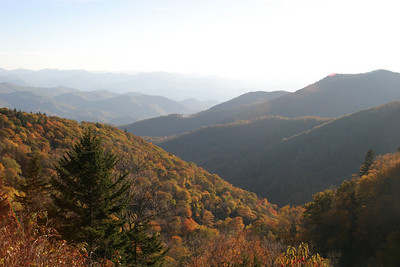 Fall Colors in the Great Smokies and Plott Balsams, Oct 2008