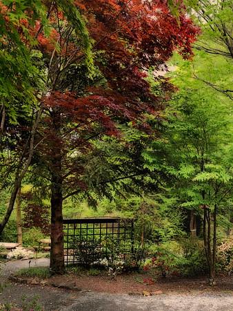 Gardens of The University of North Carolina