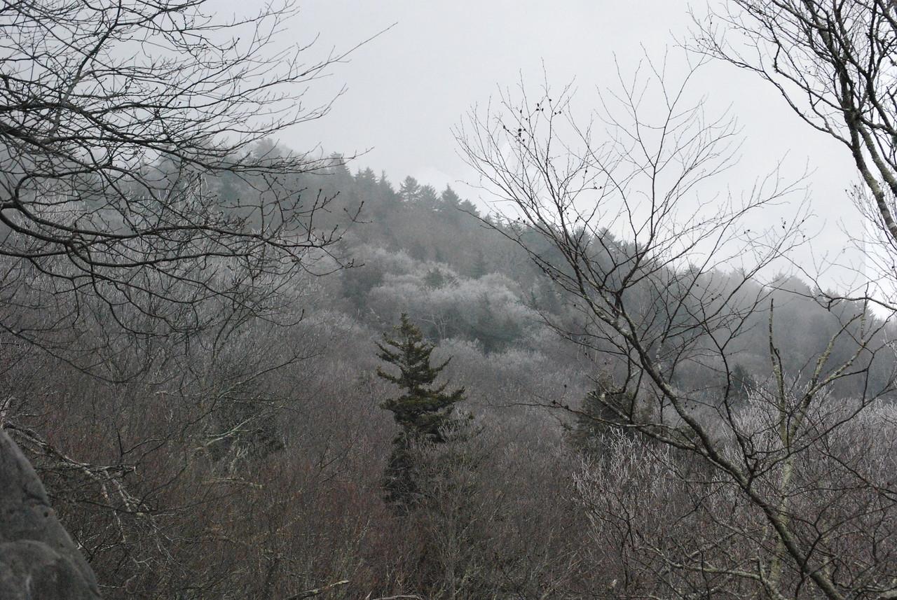 12-4-2009 Beech Mountain and Grandfather Mountain 333