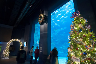 North Carolina Aquarium at Fort Fisher in Kure Beach, North Caro