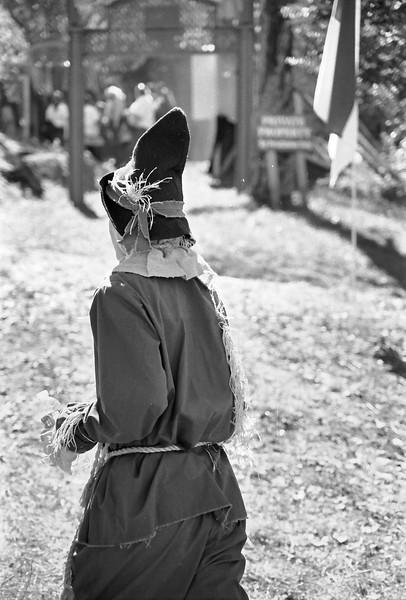 15 Scarecrow walking