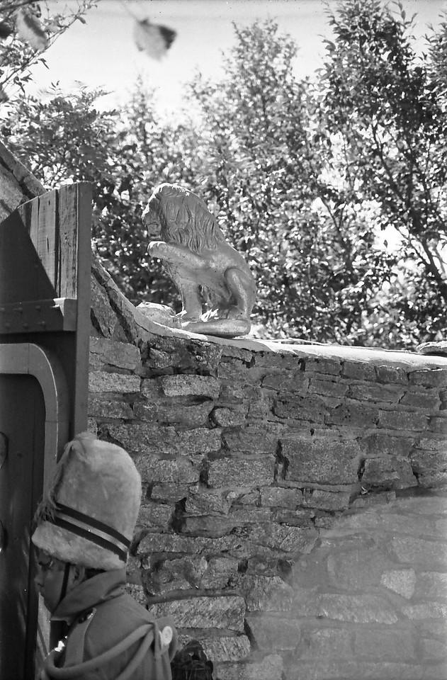 31 Doorman and Lion