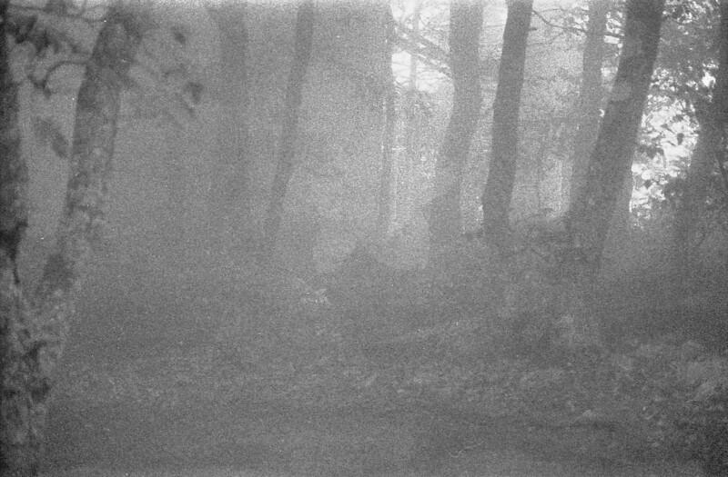 13 Very foggy